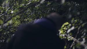 Misha Alperins rygg mellom trær