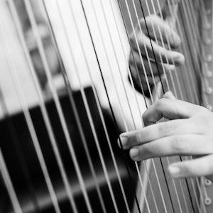 Emmanuel Padilla Holguíns hender på harpen i svart-hvitt