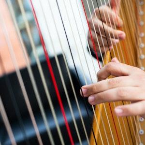 Emmanuel Padilla Holguíns hender på harpen