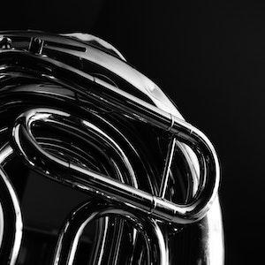 Nærbilde av horn