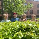 Studenter står bak busker og smiler