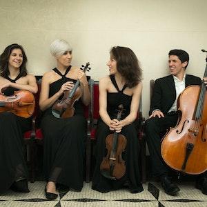 Gruppebilde av Echos Quartet