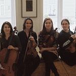 Gruppebilde av Hafnium Quartet