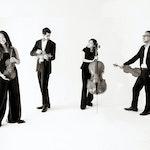 Svart-hvitt-bilde av Zorá Quartet på helt hvit bakgrunn